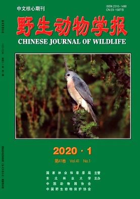 野生动物学报杂志