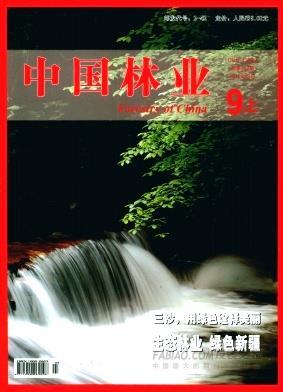 中国林业杂志